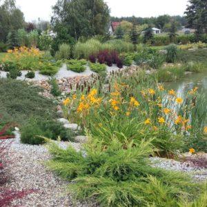 trawy ozdobne do ogrodu we Włocławku